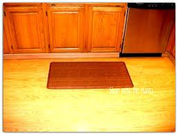 Padded Kitchen Mats Kitchen Cushion Floor Mat Picgit Com