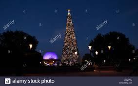 christmas tree florida christmas lights decoration