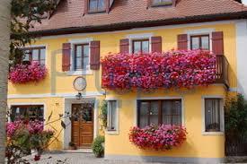 geranien balkon bildagentur pitopia bilddetails gelbes haus mit blumen