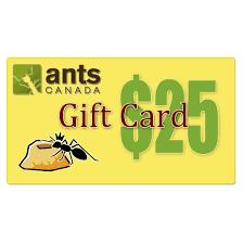 email gift card e gift card 25 00 antscanada