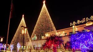 tree lights led soft white light recycling
