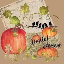 hand painted pumpkin halloween clipart digital clipart digital watercolor clipart hand painted