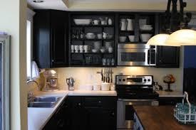 black cabinets kitchen kitchens black kitchen cabinets popideas co