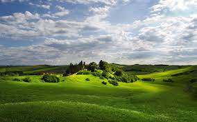 green hill trees cloud tuscany wallpapers green hill trees cloud
