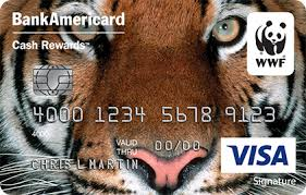 Bank Of America Business Card Services Bank Of America Cash Rewards