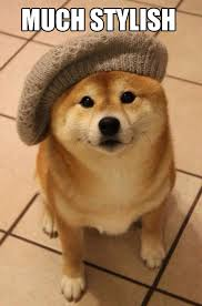 wow so hat very fashion such cute the meta picture