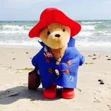 paddington bear iampaddington twitter