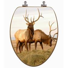 themed toilet seats trophy elk 3d image toilet seat potty concepts