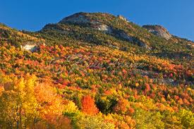 grandfather mountain fall color blue ridge parkway kevin adams