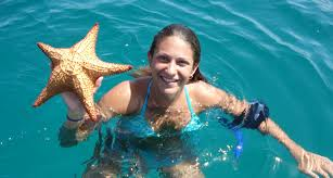 Florida wild swimming images Water planet dolphin swims programs tours therapy cruises jpg