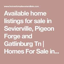 best 25 homing pigeons for sale ideas on pinterest pigeons for