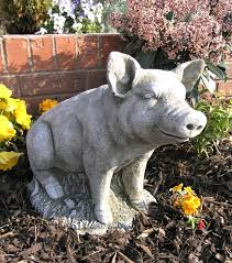 garden pig images search