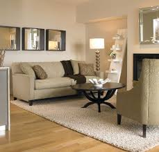 Big Area Rugs For Cheap Living Room Large Area Rugs Ikea Rug Large Area Rug Cheap Home