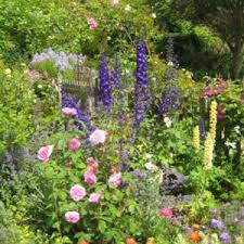 small front cottage garden ideas uk archives catsandflorals com