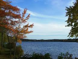 Vermont lakes images Lake iroquois town of williston vermont JPG
