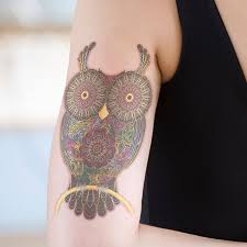 15 mysteriously awesome owl designs you gotta see owl
