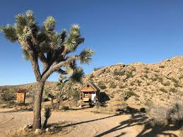 10 special airbnb accommodations in yucca valley california trip101