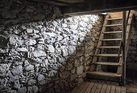 How To Stop Mold In Basement by 10 Ways To Reduce Mold Allergies No 4 Can Make A Big Difference