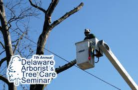 Delaware how fast does electricity travel images 7th annual arborist and tree care seminar on oct 30 and 31 at jpg