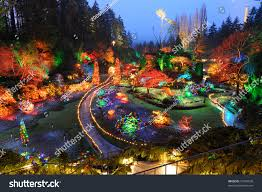 beautiful sunken garden night scene christmas stock photo 51403630