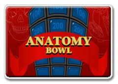 Quiz Anatomy Best 25 Anatomy And Physiology Quiz Ideas Only On Pinterest