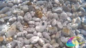 web le ghiaie spiaggia le ghiaie 400 m portoferraio isola d elba