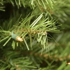 Ge Pre Lit 7 U0027 by 100 Frasier Fir Christmas Trees Artificial Ge Just Cut