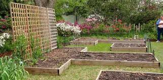 impressive planting raised beds gardening in raised beds gardening