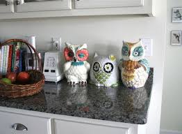owl decorations for home owl kitchen decor google search my kitchen pinterest owl