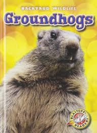 groundhogs blastoff readers backyard wildlife level 1 library