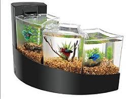 Betta Fish Decorations Fish Tank Waterfall Decoration Google Search Fish Pinterest