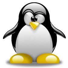 penguins tv youtube