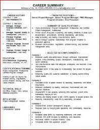 Resume Professional Statement Examples professional summary resume examples