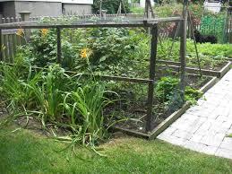 garden netting trellis garden