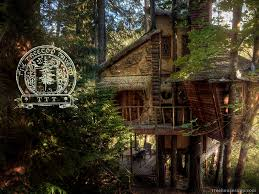 you u0027ll never guess what u0027s inside this treehouse jaw dropping