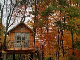 best airbnbs in the us best treetop airbnbs for fall foliage business insider