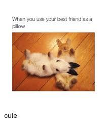 Cute Best Friend Memes - 25 best memes about best friend best friend memes