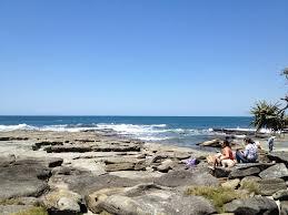 enjoy the rock pools shelly beach sunshine coast