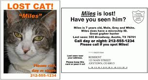 lost cat flyer template word yourweek 301242eca25e