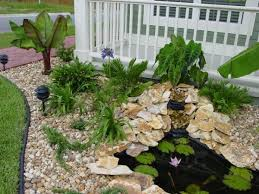Landscaping Ideas Front Yard Native Florida Plants Low Maintenance With Low Maintenance