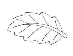 coloring leaf printable coloring pages