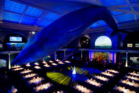 9 great wedding venues for science lovers mental floss