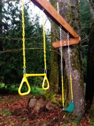 the tuscan home spring break tree swing project