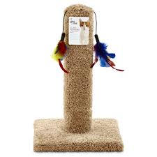 Cat Scratcher Tower You U0026 Me Cat Scratch Post With Feather Toys Petco