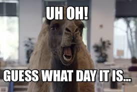 Hump Day Camel Meme - meme maker uh oh guess what day it is67