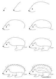 best 25 hedgehog drawing ideas on pinterest hedgehog