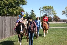 Kansas how far can a horse travel in a day images Sunset trails horse stables lee 39 s summit mo petting zoo and jpg