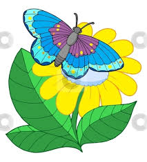 butterfly with flower clipart clipartfest flower with with regard