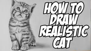 how to draw a realistic baby kitten drawing animal hair youtube