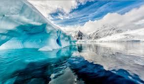 imagenes de la antartida por qué la antártida se está reverdeciendo kienyke com